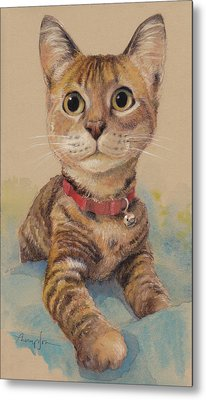 Kitten On The Loose Metal Print by Tracie Thompson