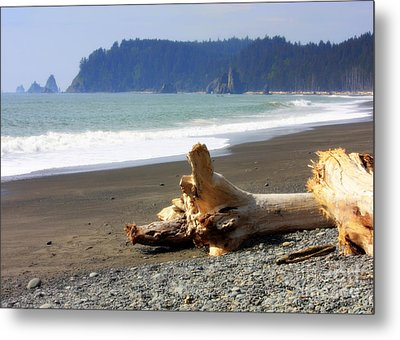 La Push Beach  Metal Print by Carol Groenen