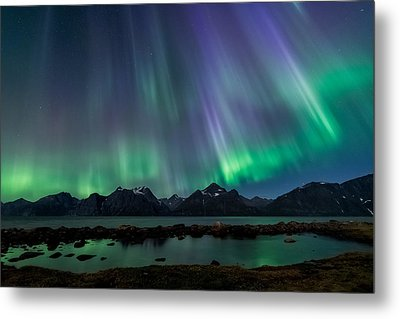 Lady Of The Night Metal Print by Tor-Ivar Naess