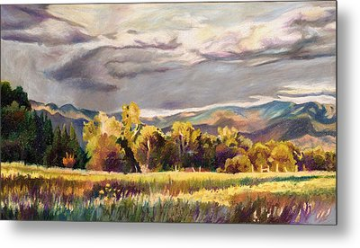Last Light Metal Print by Anne Gifford