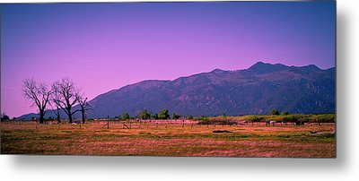 Late Afternoon In Taos Metal Print by David Patterson