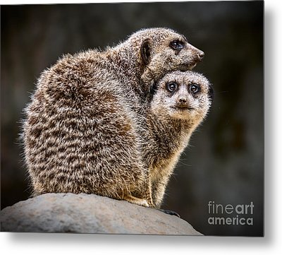 Lean On Me Metal Print by Jamie Pham