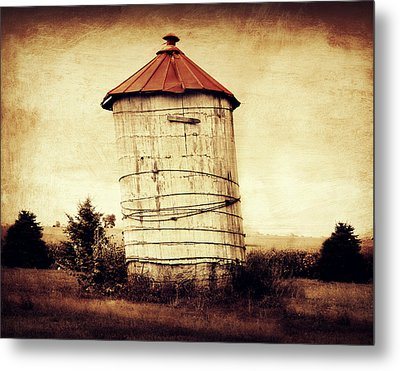 Leaning Tower Metal Print by Julie Hamilton