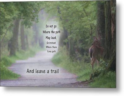 Leave A Trail Metal Print by Dan Sproul