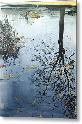 Leaves And Reeds On Tree Reflection Metal Print by Calum McClure