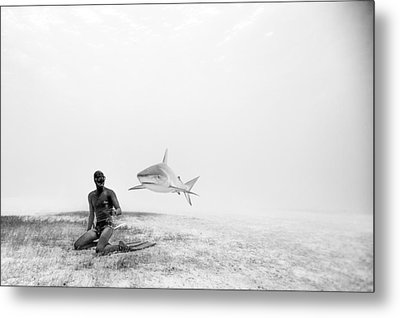 Levitation Metal Print by One ocean One breath