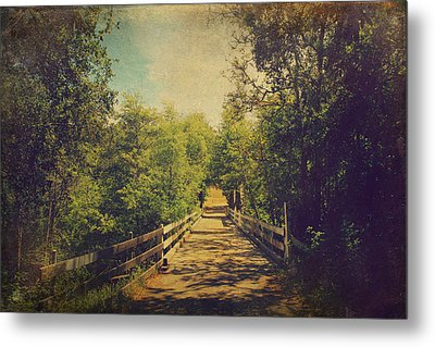Lifetime Of Memories Metal Print by Laurie Search