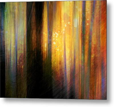 Light In The Forest Metal Print by Ann Powell