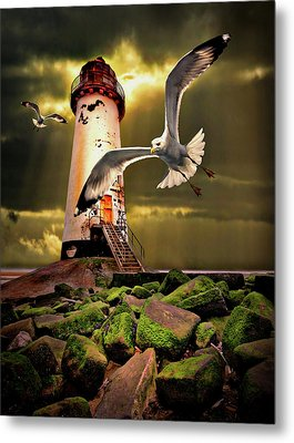 Lighthouse With Seagulls Metal Print by Meirion Matthias