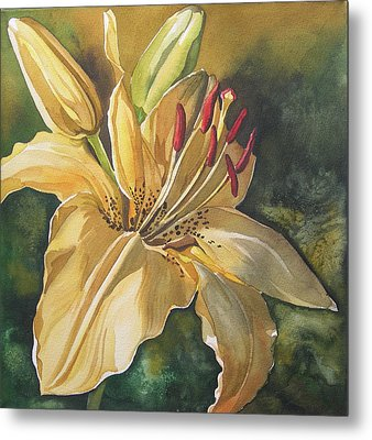 Lily In Yellow Metal Print by Alfred Ng
