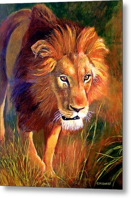 Lion At Sunset Metal Print by Michael Durst