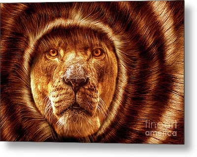 Lion Lady   -1 Metal Print by Prar Kulasekara