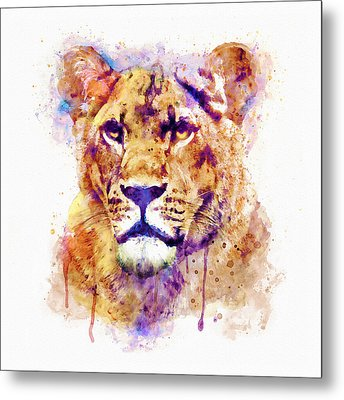 Lioness Head Metal Print by Marian Voicu