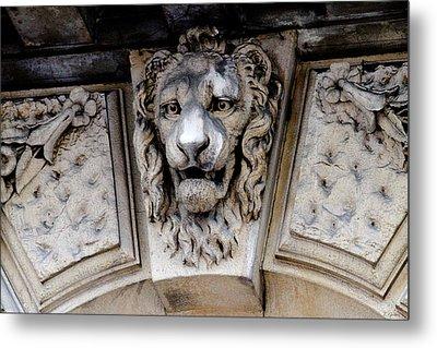 Lions Head Metal Print by Tony Grider