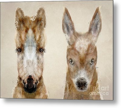 Little Donkey And Little Pony Metal Print by Bri B