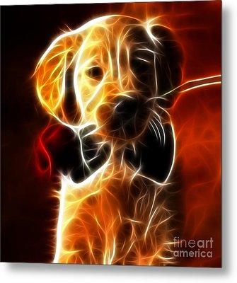 Little Puppy In Love Metal Print by Pamela Johnson