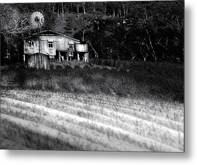 Living On The Land Metal Print by Holly Kempe