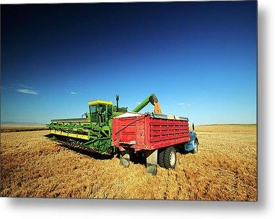 Load Of Wheat Metal Print by Todd Klassy