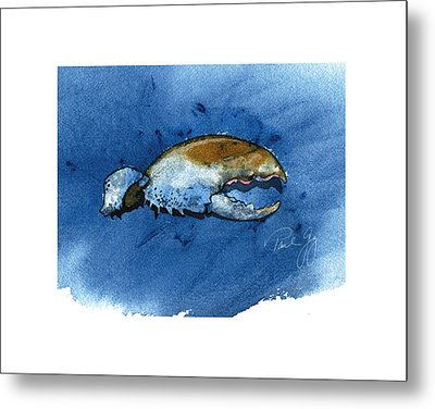 Lobster Claw Metal Print by Paul Gaj