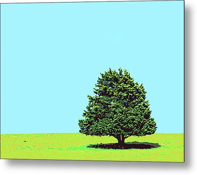 Lone Tree Metal Print by Dominic Piperata
