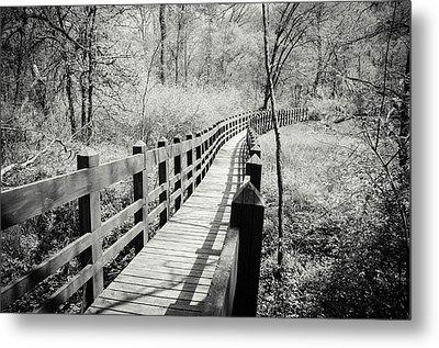 Long Bridge Metal Print by Amy Turner