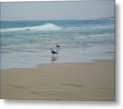 Looking Out Into The Sea Metal Print by Bill Cannon