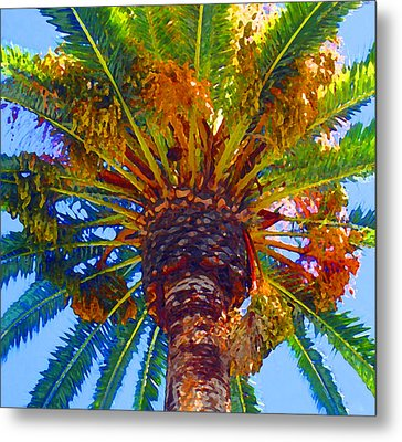 Looking Up At Palm Tree  Metal Print by Amy Vangsgard
