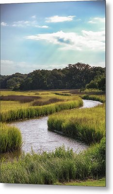 Lowcountry Creek Metal Print by Drew Castelhano