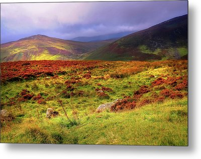 Luminescent Light Over Wicklow Hills Metal Print by Jenny Rainbow