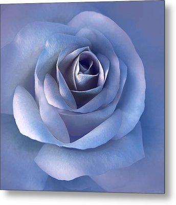 Luminous Lavender Rose Flower Metal Print by Jennie Marie Schell