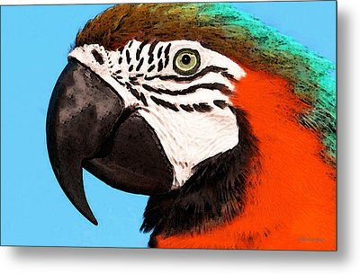 Macaw Bird - Rain Forest Royalty Metal Print by Sharon Cummings