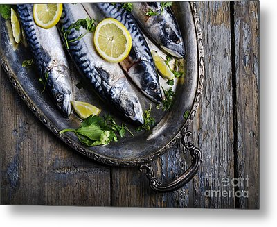 Mackerels On Silver Plate Metal Print by Jelena Jovanovic