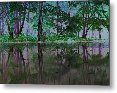 Magical Forest Metal Print by Karol Livote