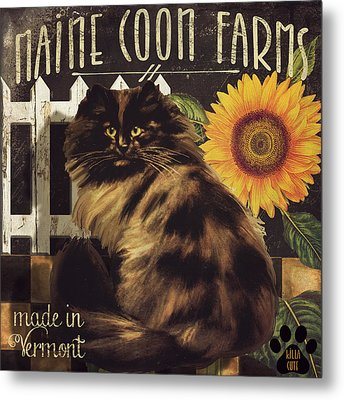 Maine Coon Farms Metal Print by Mindy Sommers