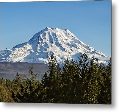Majestic Metal Print by Kelley King