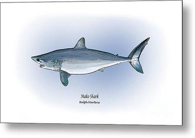Mako Shark Metal Print by Ralph Martens