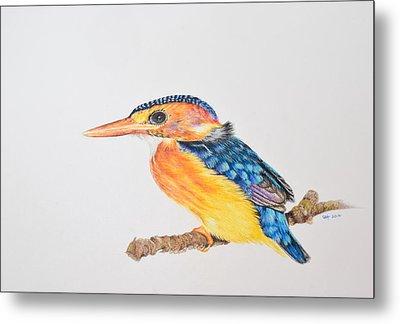 Malachite Kingfisher Metal Print by Biophilic Art