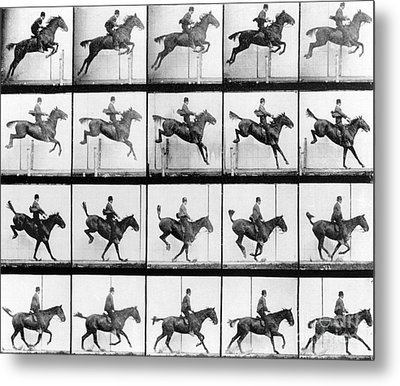 Man And Horse Jumping Metal Print by Eadweard Muybridge