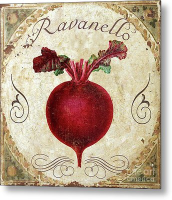 Mangia Radish Metal Print by Mindy Sommers