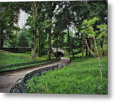 Manhattan - Central Park 001 Metal Print by Lance Vaughn