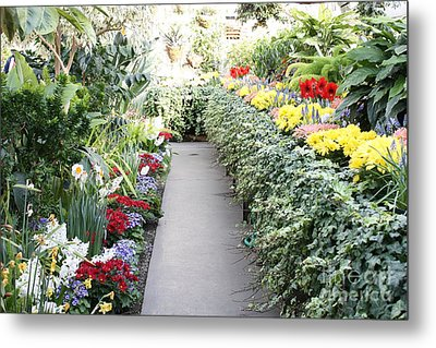 Manito Park Conservatory Metal Print by Carol Groenen