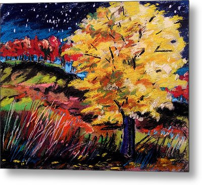 Maple At Night Metal Print by John  Williams
