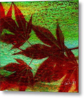 Maple Leaf 2 Metal Print by Paul Gaj