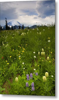 Meadow Beneath The Storm Metal Print by Mike  Dawson