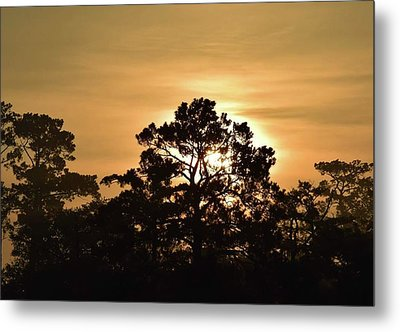 Memorial Day Sunrise Metal Print by John Glass