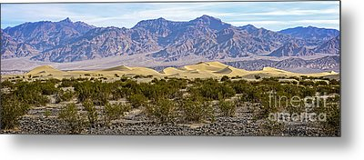 Mesquite Flat Sand Dunes Metal Print by Charles Dobbs
