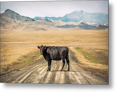 Middle Of The Road Metal Print by Todd Klassy