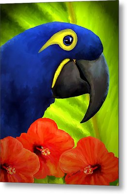Mimi Metal Print by David Wagner