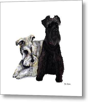 Mini Schnauzer Buddies Metal Print by Kim Souza