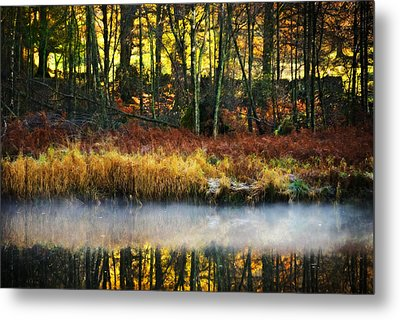 Mist On The Water Metal Print by Meirion Matthias